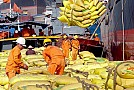 Bức tranh kinh tế Việt Nam 9 tháng qua: Màu sáng và những thách thức
