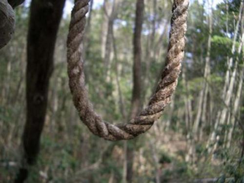 Những truyền thuyết đáng sợ ở khu Rừng tự sát