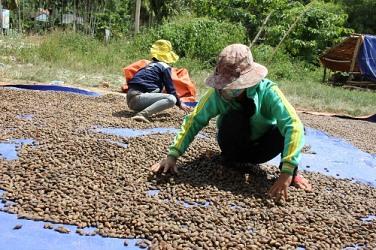 Thừa Thiên Huế: Nỗi đau sau mỗi mùa ươi