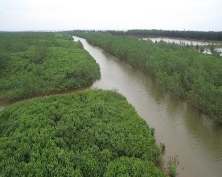 Dự án lấn 320 ha biển làm công nghiệp, dịch vụ ở Thái Bình: Từ lợi thế trời cho đến bài toán kinh tế, môi trường
